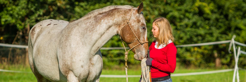 Fü(h)rPferd Horsemanship