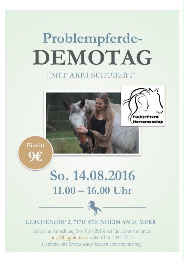 Flyer Demotag
