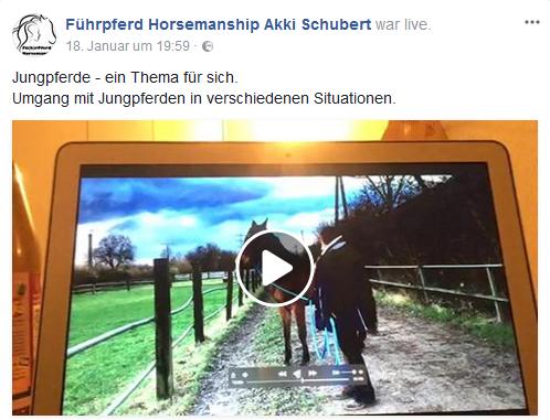 Fb Bildschirm